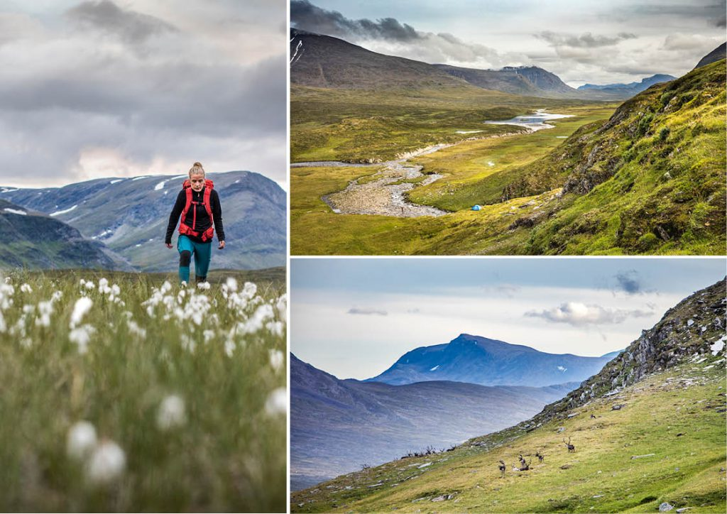 Swedish Lapland and Kungsleden (The King's Trail)