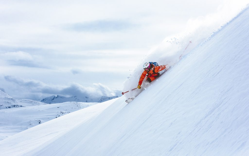 Skiier turning in powder