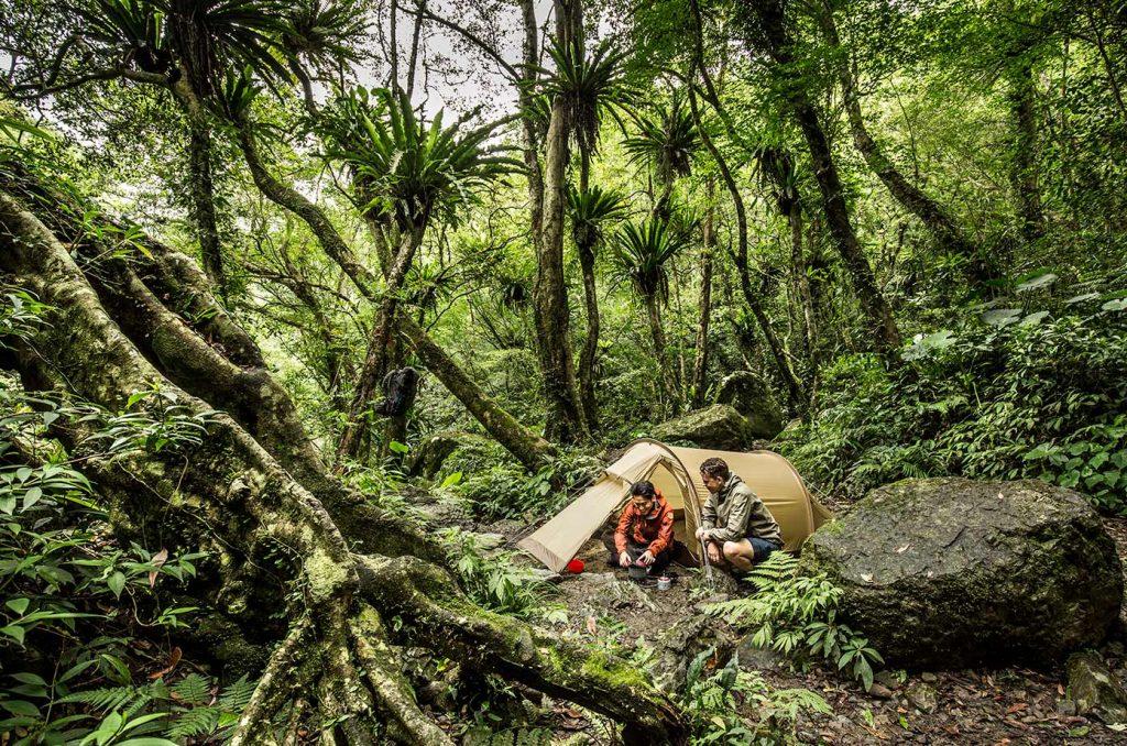 Camping in the rainforest, fjällräven Abisko Lite 3
