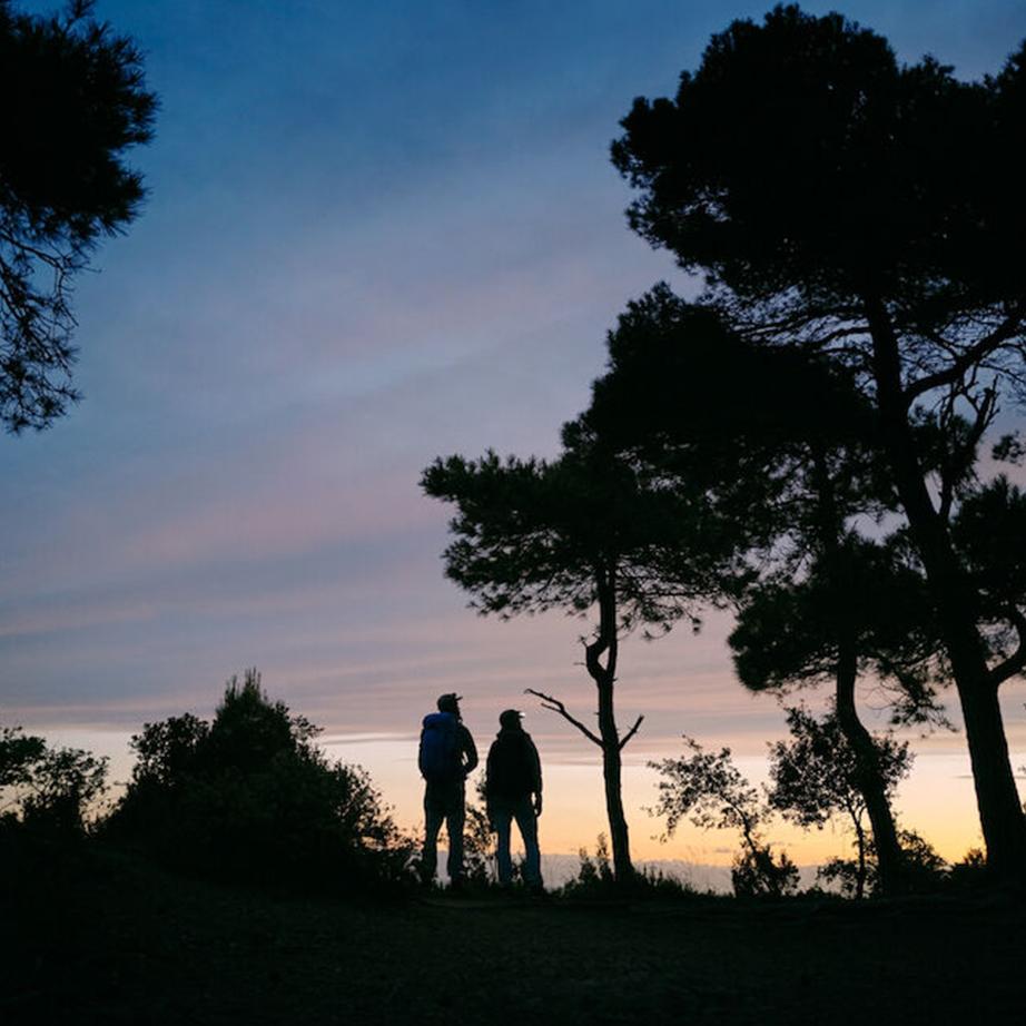Trekking in the sunset
